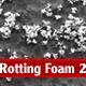 Rotting Foam 2