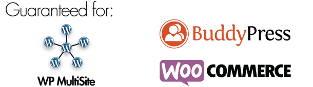 WordPress Custom Login Theme Page - 6