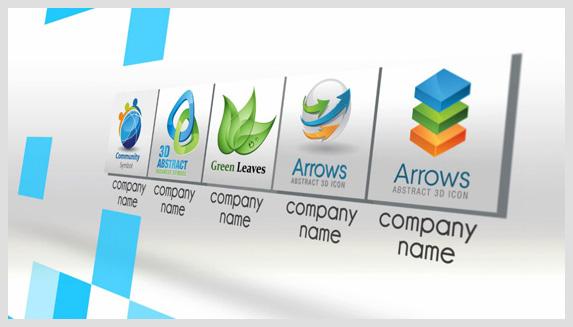 Company in Brief - 4