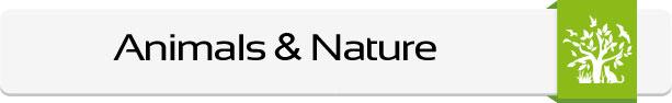 Animals-Nature-Main