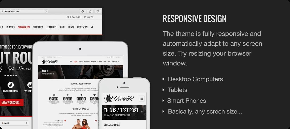 Winner Responsive Design