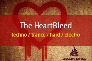 The Heartbleed
