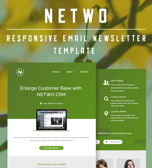 netwo email template