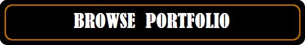 BROWSE-PORTFOLIO-2