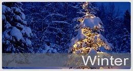 Winter photo WinterSm_zps6cecc6b7.jpg