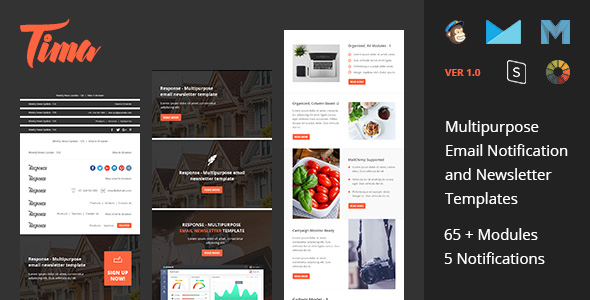 New.Fresh - Responsive email newsletter templates - 3