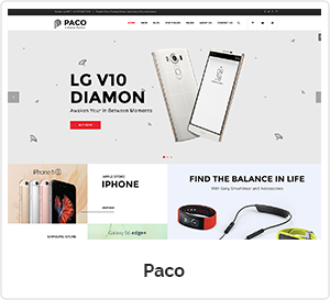 Paco - Digital WordPress Theme