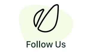 Follow us on Envato