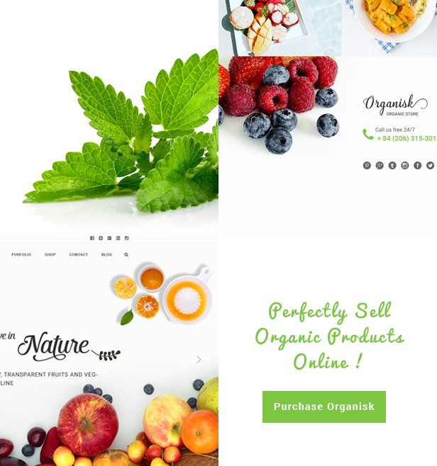 Organisk - Multipurpose Organic WooCommerce Theme - 10