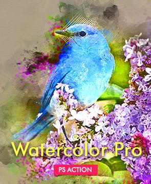 Watercolor portfolio