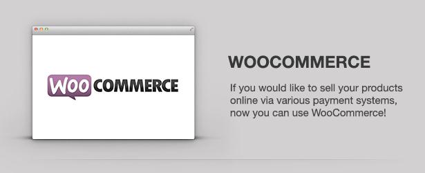 Magfolio - WP WooCommerce Portfolio Blog Theme 49