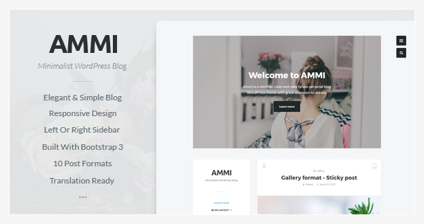 Ammi WordPress Theme