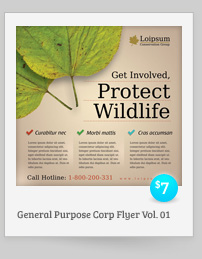 2 Corporate-Style Flyer/Ads Templates - 6