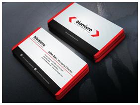 Business Card Mock up - 31