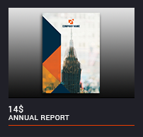 The Annual Report - 17