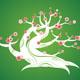 spring flowering bonsai tree