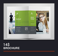 Trifold Brochure - 40