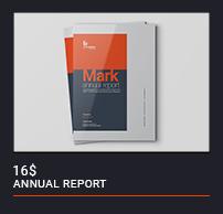 Annual Report - 11