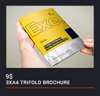 Trifold Brochure - 82