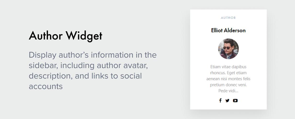 Author Widget