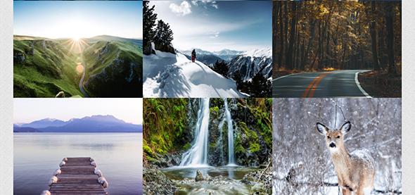 Galeria - Ultimate WordPress Album, Photo Gallery Plugin - 2