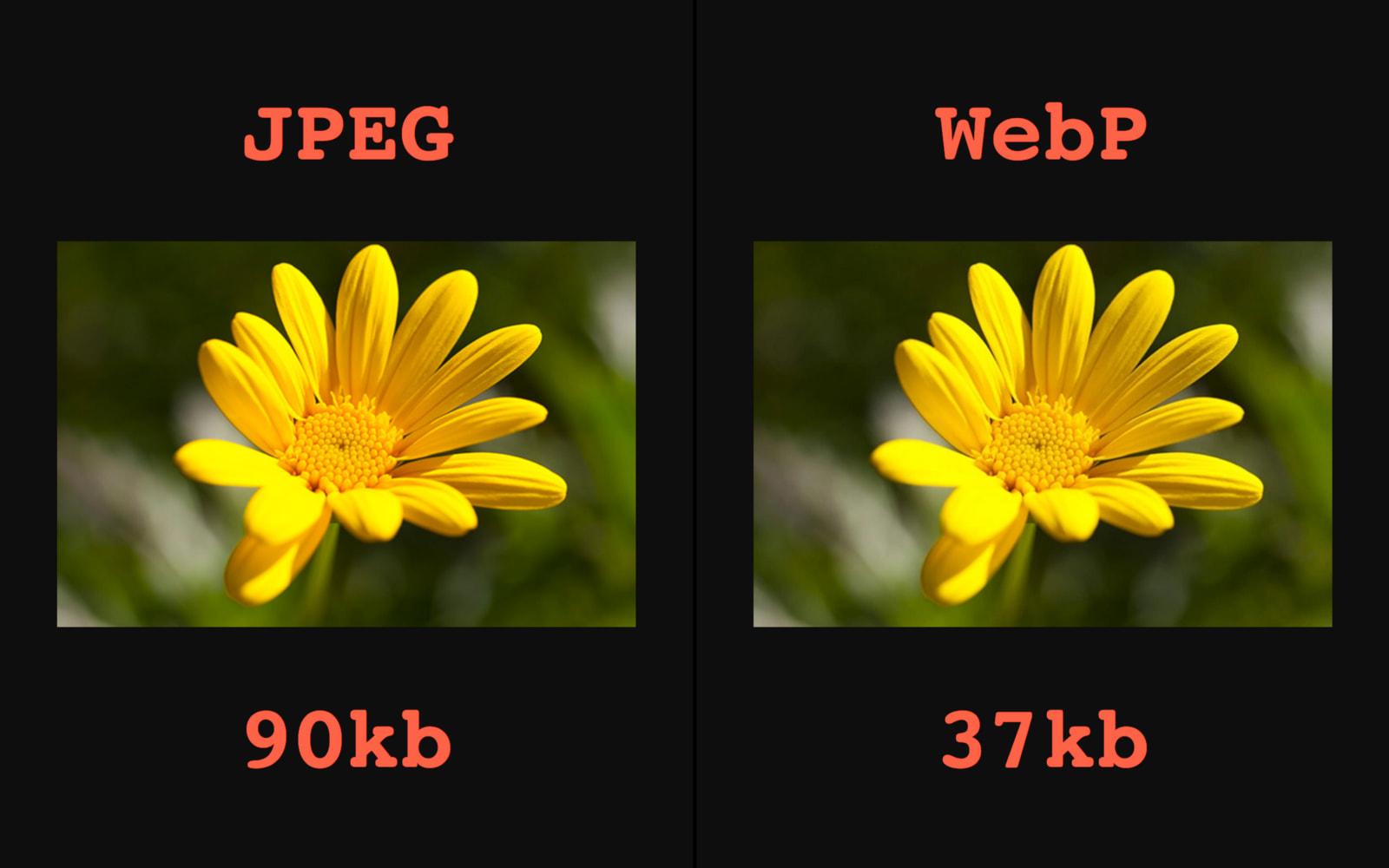Automatic WebP & Image Compression for WordPress & WooCommerce - 11