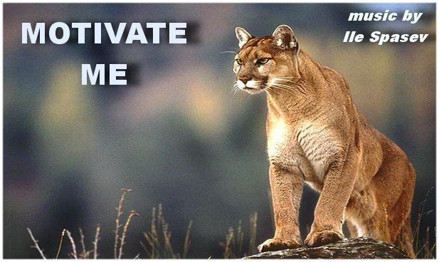 photo lion-wallpaper-3_zpsog6j4zvf.jpg