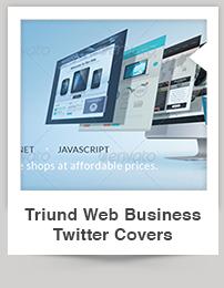 Triund Web Business Bi-Fold Brochure - 10