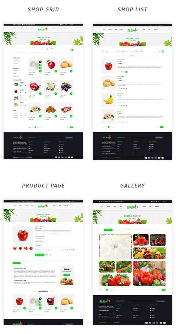Organic Foods and Fruits PSD Template - 3