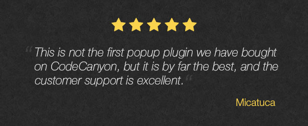 Popup Plugin for WordPress - Layered Popups - 17