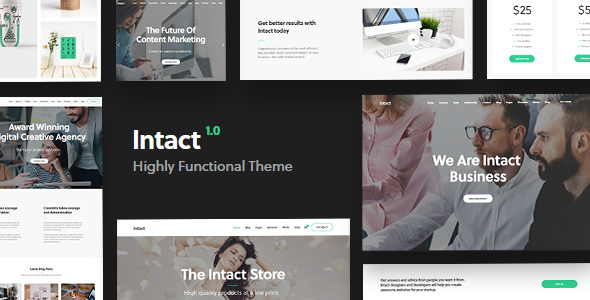 Intact - WordPress Theme