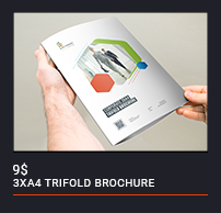 Trifold Brochure - 88