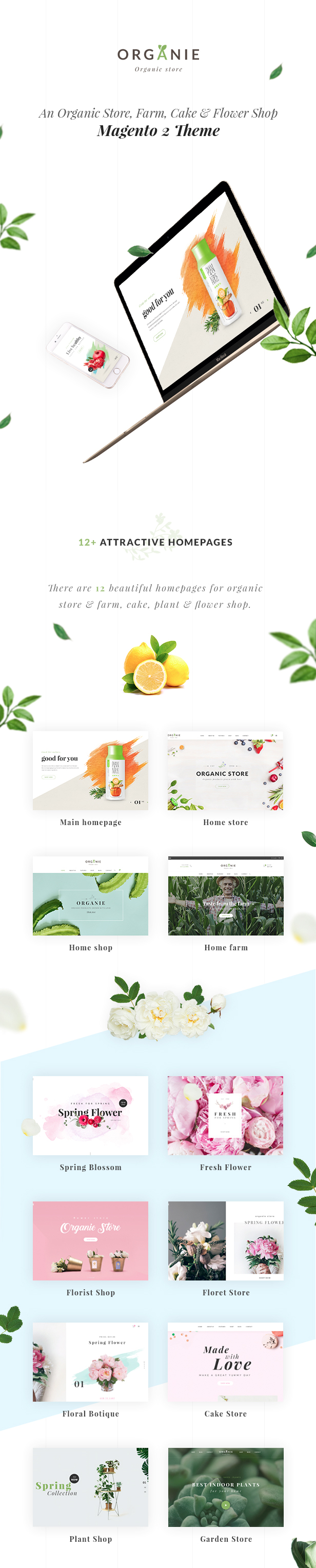 Organie - An Organic Store, Farm, Cake and Flower Shop Magento 2 and 1 Theme - 5