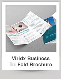 Viridx Business Card - 10
