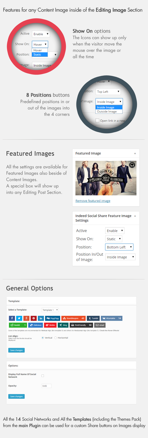 Social Share on Images AddOn - WordPress - 6