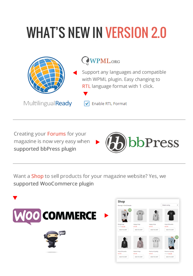 Support WPML WooCommerce bbPress - DeliPress - Magazine and Review WordPress Theme