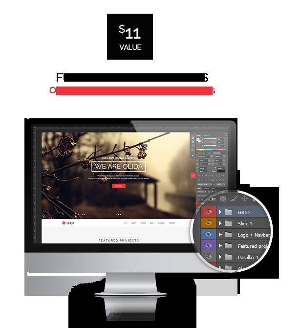 Olida | Responsive One Page Multi-Purpose Parallax - 12