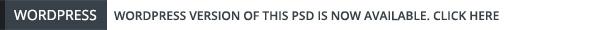 dotBIZ | Multi-Purpose Parallax PSD Landing Page - 2