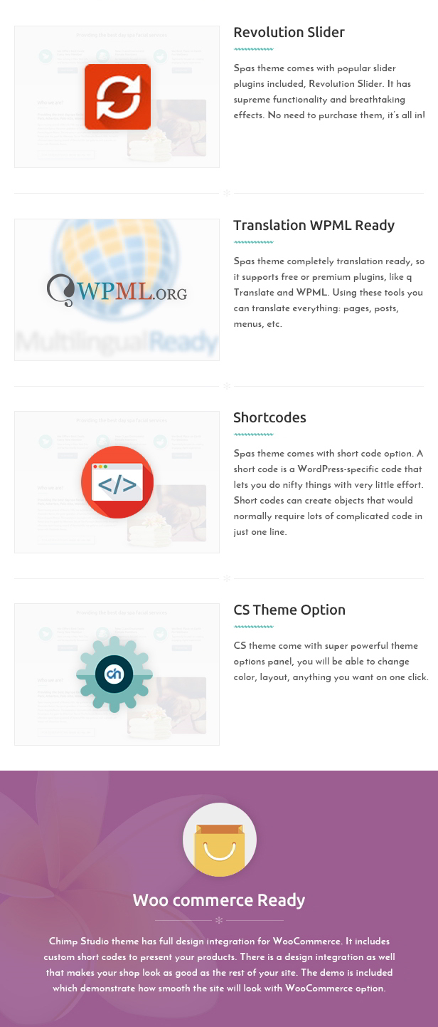 Wordpress Salon Theme