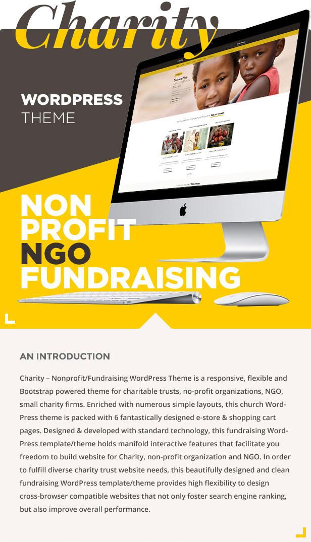 Charity: Nonprofit/NGO/Fundraising WordPress Theme - 2