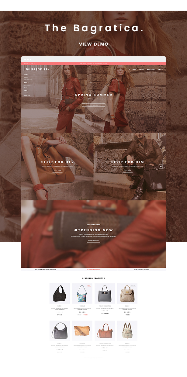 Ella - Responsive Shopify Template (Sections Ready) by halothemes