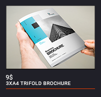 Trifold Brochure - 84