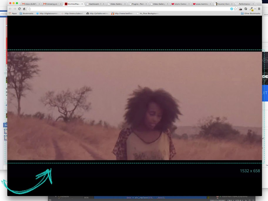 Video Gallery WordPress Plugin /w YouTube, Vimeo, Facebook pages - 13