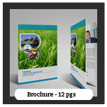 Multi Business Brochure - 65