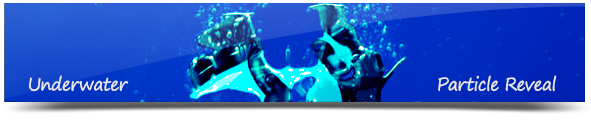 Angler Fish Logo Reveal - 9