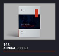 Annual Report - 13