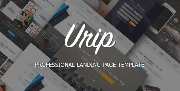 Urip Professional Landing Page