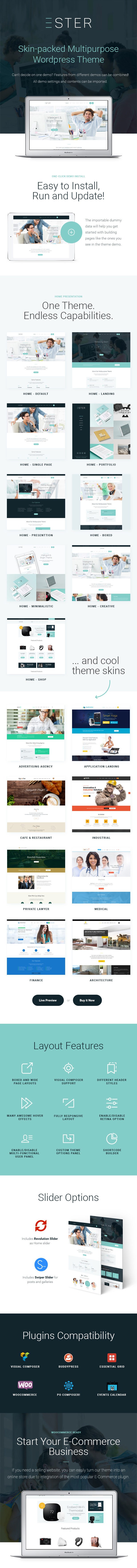 Business WordPress Theme Features