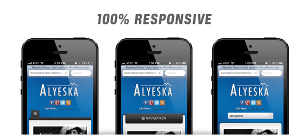 Alyeska Responsive WordPress Theme - 6