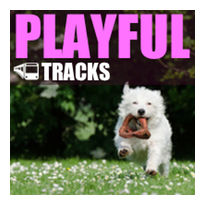 photo playful-inspirational-happy-royalty-free-songs.png